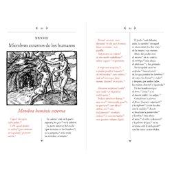 Libro. RAPUNZEL / RAPUNZEL. A bilingual book