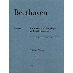 Libro. ACCELERATED PIANO ADVENTURES - TECHNIQUE & ARTISTRY BOOK