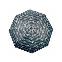 DVD. La Guardia del León. LA HORA DE SCAR