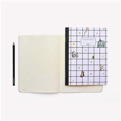Libro. JUAN DIEGO FLÓREZ. Notas de una voz