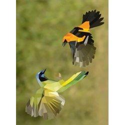 Partitura. BRAZILIAN PIANO - CHORO, SAMBA, AND BOSSA NOVA