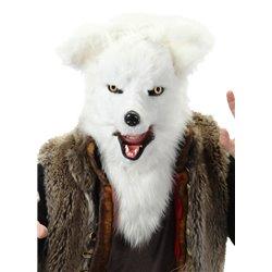 Libro. EL PROFESOR ASTRO CAT Y LA ODISEA DEL CUERPO HUMANO