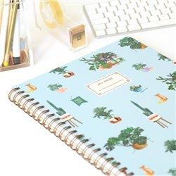 Libro. PANDORA MIRA AL FORO. Antología de teatro para adolescentes