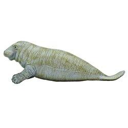 DVD. MATEO