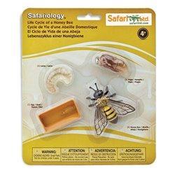 Libro. LA SEMILLA INMORTAL
