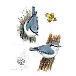 Muñeco. ABRAZADOR OSO PANDA