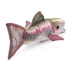 Libro. TRANSCENDIENDO FRONTERAS