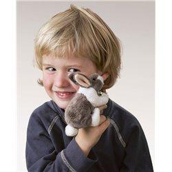 Libro. LABIO DE LIEBRE