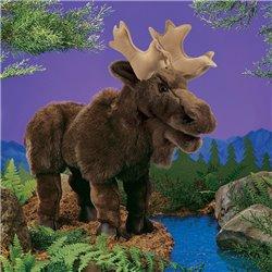 EL ABANICO DE LADY WINDERMERE - LA IMPORTANCIA DE LLAMARSE ERNEST