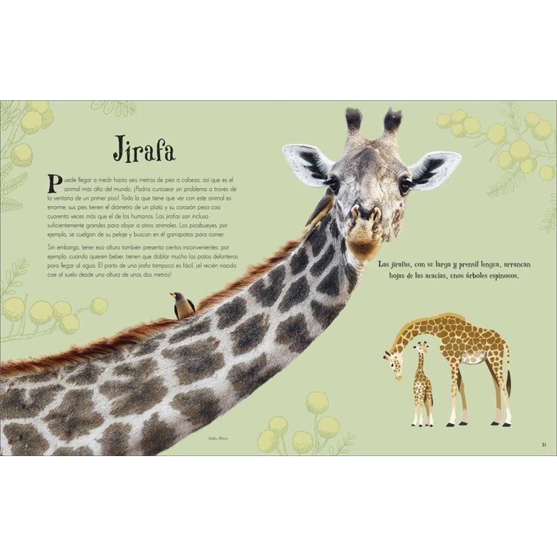Cuaderno A4 Macanudo Composition Cuadriculado