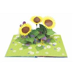 Libro. BIZARRA. Rafael Spregelburd