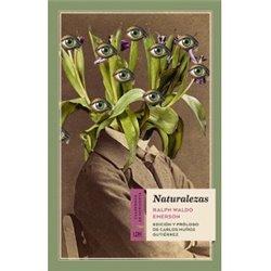 Libro. ¡LUZ, FUEGO, DESTRUCCIÓN! La gran aventura de Dragon Ball ( I )