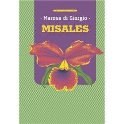 Libro. EL LADRÓN DE IMÁGENES. Encuentra inspiración para crear fantásticas fotografías