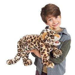 DVD. CAROL - Algunas personas cambian tu vida para siempre