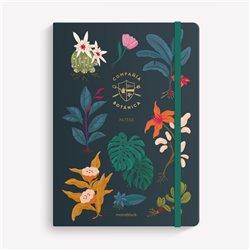 DVD.MILAGRO DE CANDELA - Una película de Fernando Trueba
