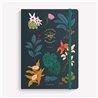 DVD.MILAGRO DE CANDEAL - Una película de Fernando Trueba