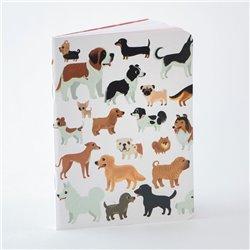 Imán. Fender Deluxe Amp