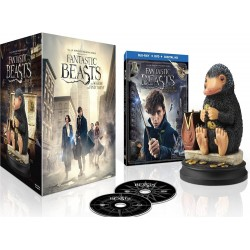 Blu-ray + DVD + Digital copy. Fantastic Beasts and where to find them / Animales Fantásticos y Dónde Encontrarlos