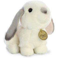 Libro. Doña Francisca Pizarro. La ilustre hija del conquistador