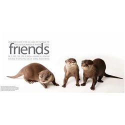 Libro. Salvar el pueblo, gobernar las almas. La Iglesia católica y la emergencia de lo social en Colombia (1908-1950)