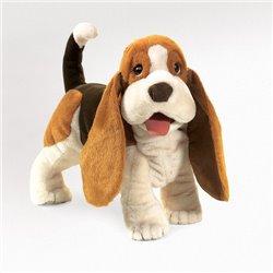BluRay - SUPERMAN