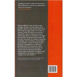 LO ARÁCNIDO Y OTROS TEXTOS