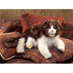 UNA BIBLIA ANTIGUO TESTAMENTO