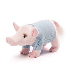 Libro. TANGO ARTE Y MISTERIO DE UN BAILE