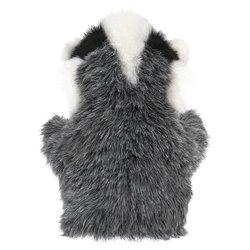 Libro. PUNTOS DE OÍDO