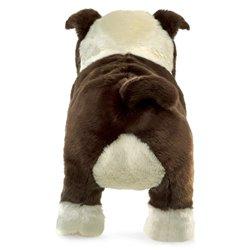 Libro. OIGA/VEA: SONIDOS E IMÁGENES DE LUIS OSPINA