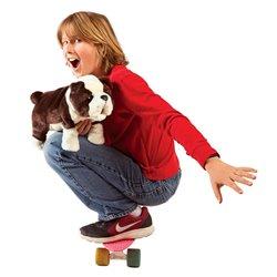 50 CINEASTAS DE IBEROAMÉRICA - GENERACIONES EN TRÁNSITO 1980 - 2008