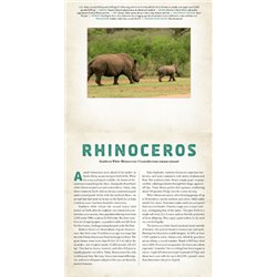 SUZUKI ENSEMBLES FOR VIOLA - VOLUME 1