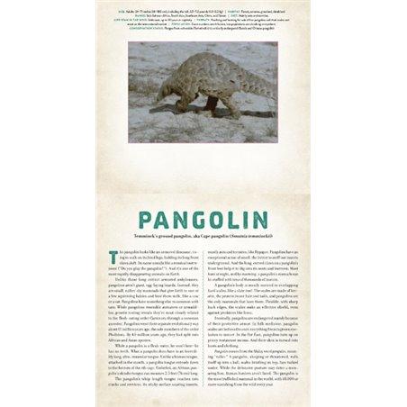 CD - SUZUKI GUITAR SCHOOL VOLUME 4