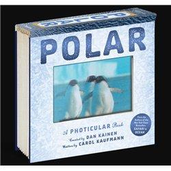 DVD. EL DIRIGIBLE ROBADO