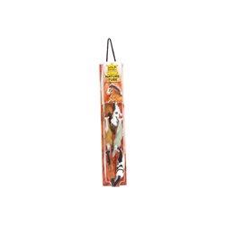 MAX CAVALERA - LA VOZ DE LOS SIN VOZ