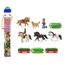 Libro. CORREO PARA EL TIGRE