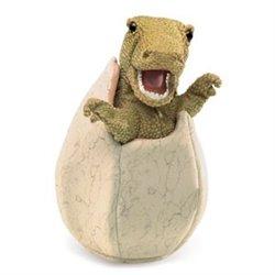 DVD. LOS HONGOS