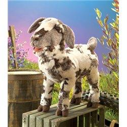 CONSTRUCCIONES DE LA EXPERIENCIA HUMANA VOL. I