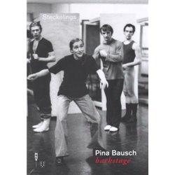DVD. EL MUNDO DE APU