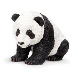 Libro. ORGULLOS Y PASIONES - LA HISTORIA DE LOS PRISIONEROS