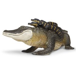 Partitura. MARY, DID YOU KNOW?