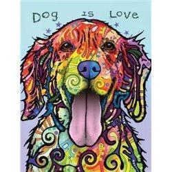 Libro. BALLET IN THE STUDIO