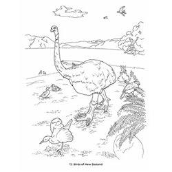 DVD. YO SOY LA DANZA