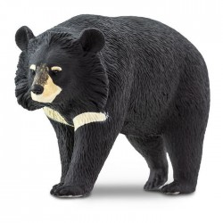 Figura. MOON BEAR