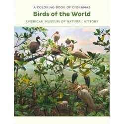 Libro de colorear. Birds of the World Dioramas Coloring Book