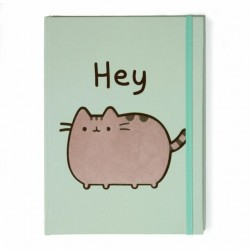 Cuaderno. PUSHEEN